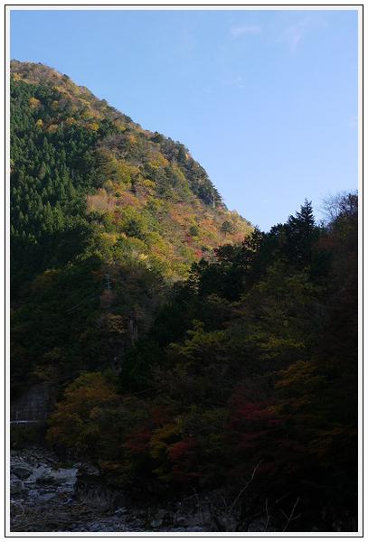 2014年11月4日 国道309号線 行者環林道 (14)