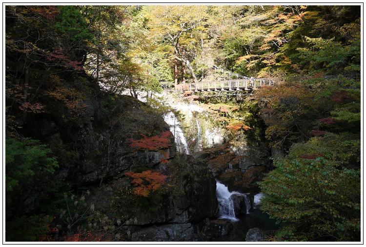 2014年11月4日 国道309号線 行者環林道 (17)