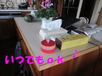 IMG_0467a.jpg