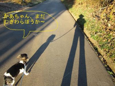 IMG_0648a.jpg