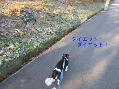 IMG_0649a.jpg
