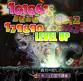 Maple140211_112647.jpg