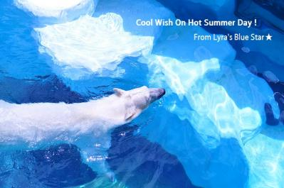 Summer Card 2012