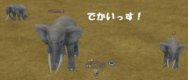 mabinogi_2014_10_12_006.jpg