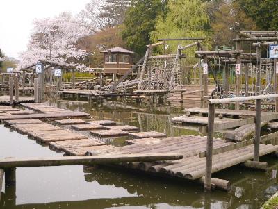 2013清水公園15