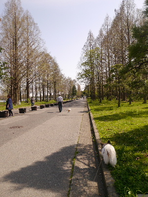 2013水元公園1