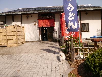 2013水元公園11
