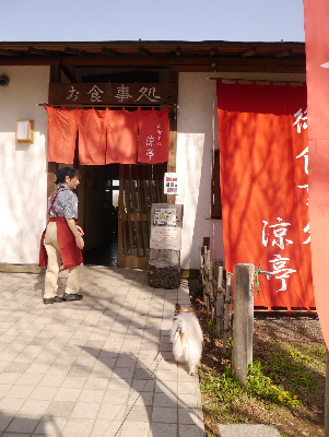 2013水元公園12