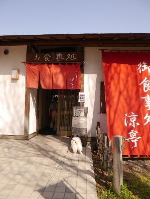 2013水元公園13
