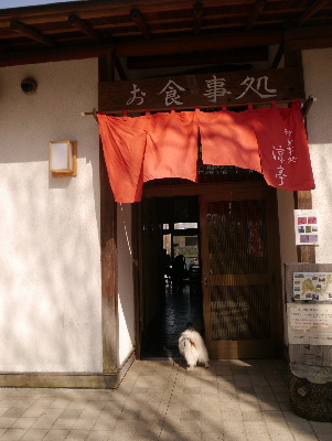 2013水元公園14