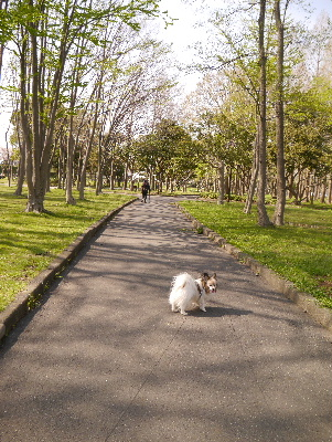 2013水元公園16