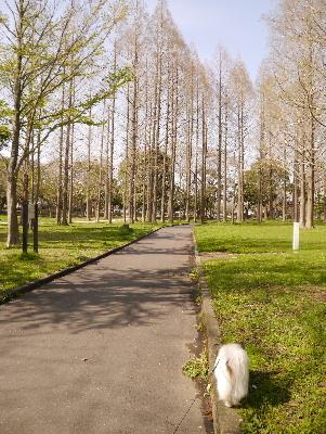 2013水元公園17