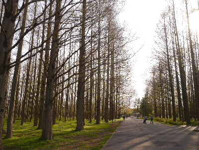 2013水元公園21