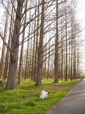 2013水元公園22
