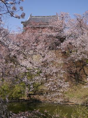 2013上田城2−4