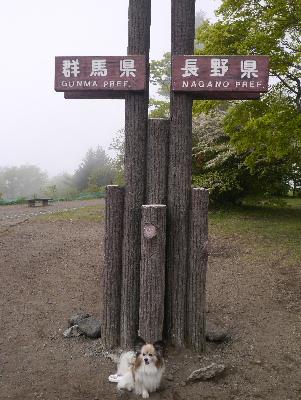 軽井沢旅行記2