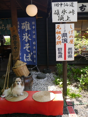 軽井沢旅行記15