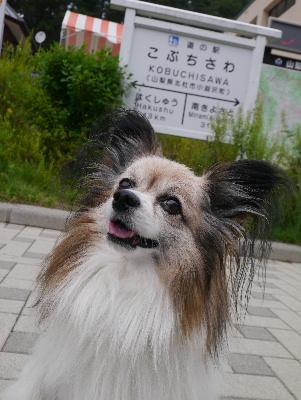 清里3−1