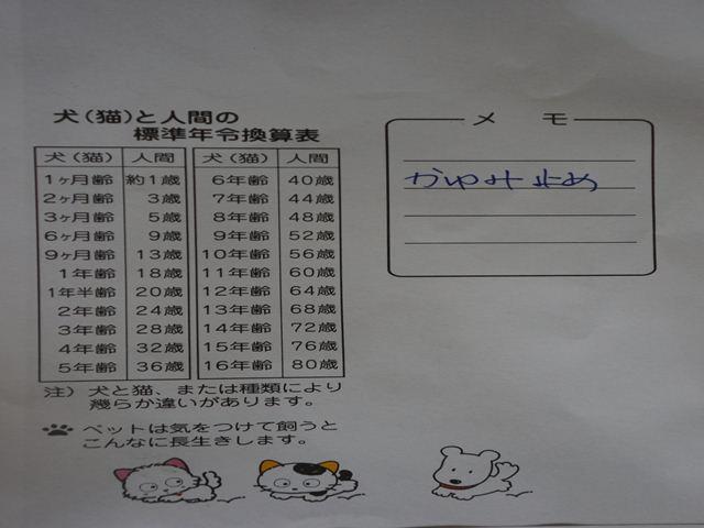 DSC03241-2_R.jpg