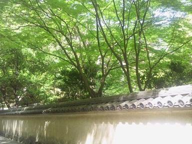 wakayamajo-012.jpg