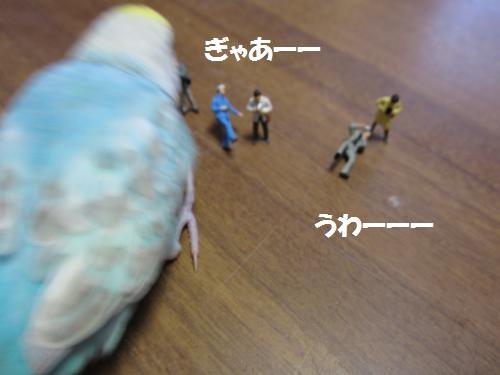 IMG_1038_convert_20121002214131.jpg
