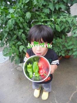 DSCN7683_convert_20120706231001.jpg