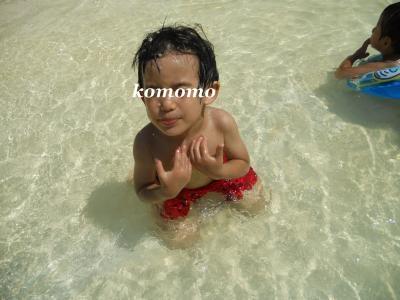 DSCN8229_convert_20120816171015.jpg