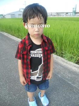 DSCN8310_convert_20120826105553.jpg