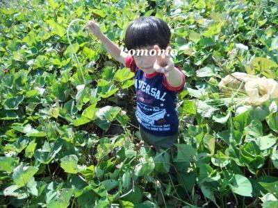 DSCN8914_convert_20121022163249.jpg