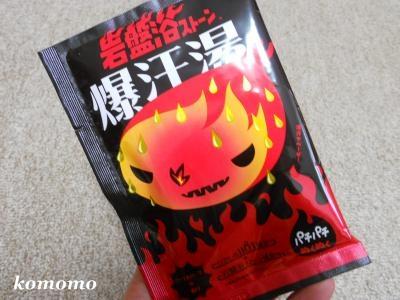 DSCN9066_convert_20121103160420.jpg