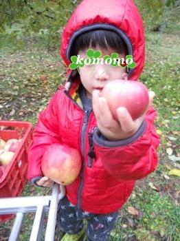 DSCN9309_convert_20121125173859.jpg