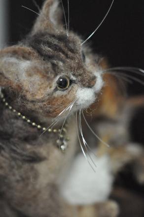 キッカーと猫201411100009(1)