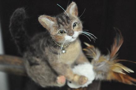 キッカーと猫201411100020(1)