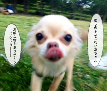 new_写真