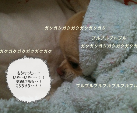 new_写真 (2)