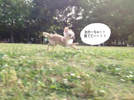 new_034.jpg