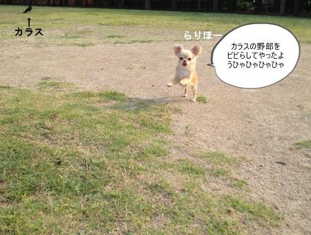 new_035.jpg