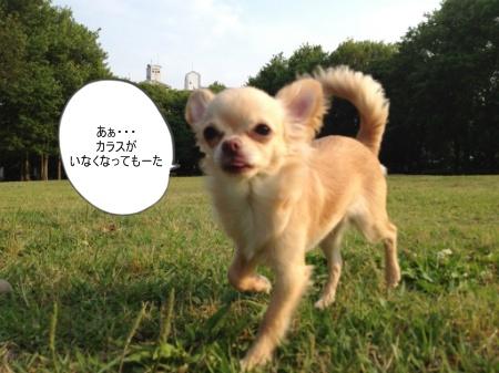 new_038_20120610101004.jpg