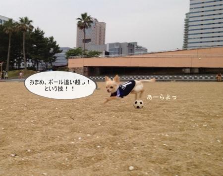 new_041_20120627202554.jpg