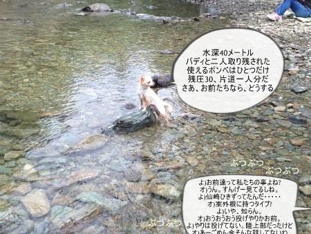 new_070.jpg