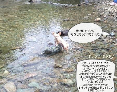 new_071.jpg