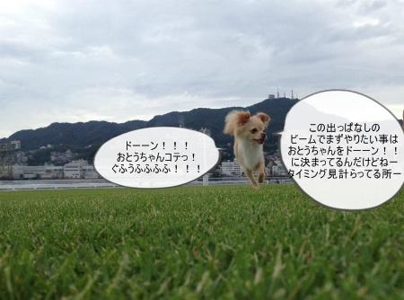 new_091.jpg