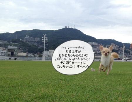 new_092.jpg