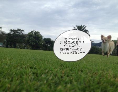 new_095_20120912155003.jpg