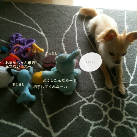 new_098.jpg