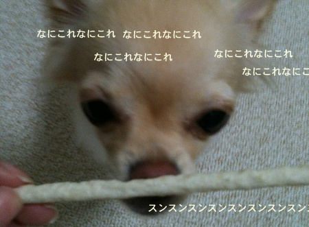 new_168.jpg