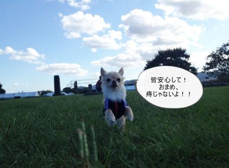 new_182.jpg