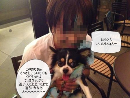 new_331.jpg