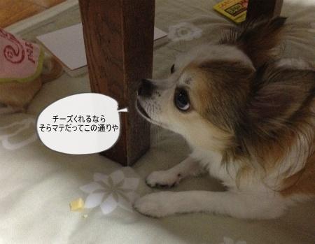 new_408.jpg