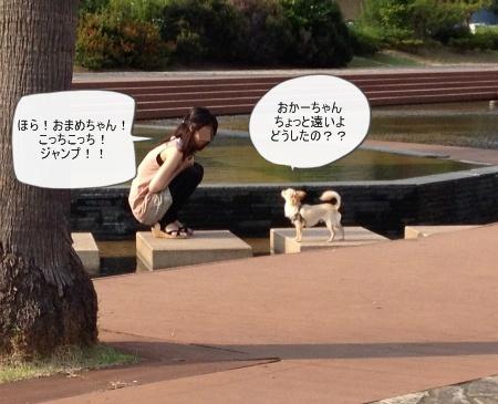 new_417.jpg